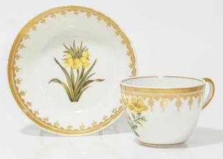 Coalport botanical cup & saucer, possibly Pardoe C. 1805 -0