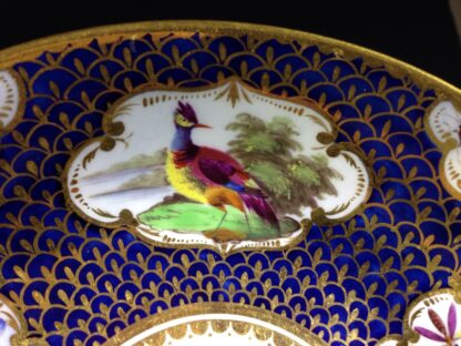 Worcester Flight Barr & Barr Cup & Saucer, fancy birds & gilt scale, c. 1820 -8753