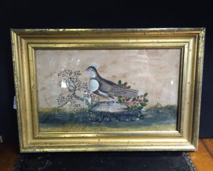 Chinese rice paper painting, a dove, early 19th century -0