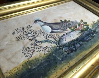 Chinese rice paper painting, a dove, early 19th century -11078