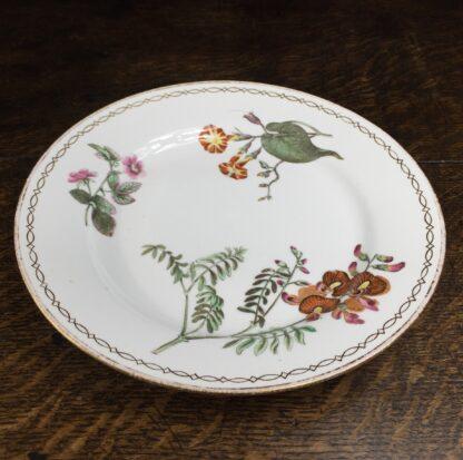 Wedgwood bone china plate, botanical specimens, C.1815 -12874