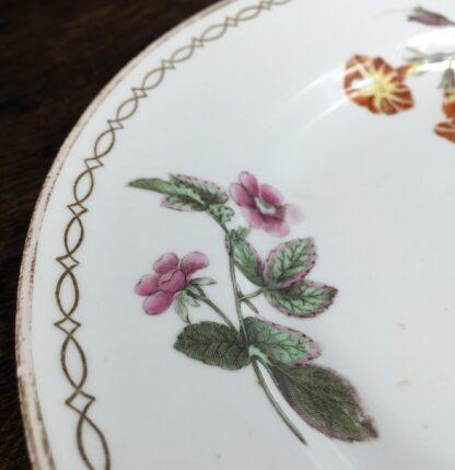 Wedgwood bone china plate, botanical specimens, C.1815 -12878