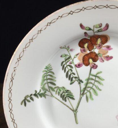 Wedgwood bone china plate, pattern 492, C. 1815-12886