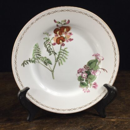 Wedgwood bone china plate, pattern 492, C. 1815-0