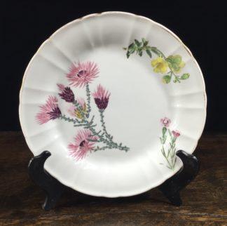 Wedgwood bone china plate, flower specimen prints, C. 1815 -0