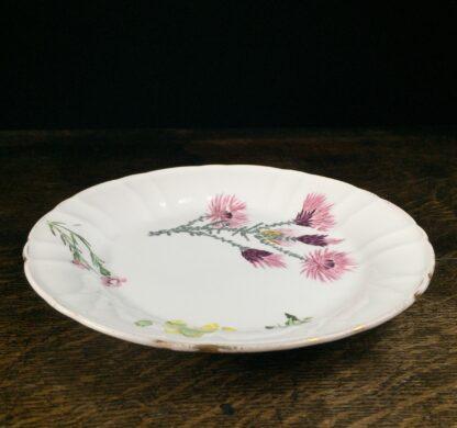 Wedgwood bone china plate, flower specimen prints, C. 1815 -12899