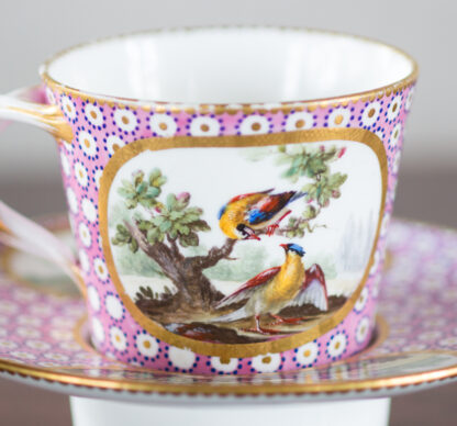 Sevres socketed cup & saucer with birds by Chappuis, 1765-15579