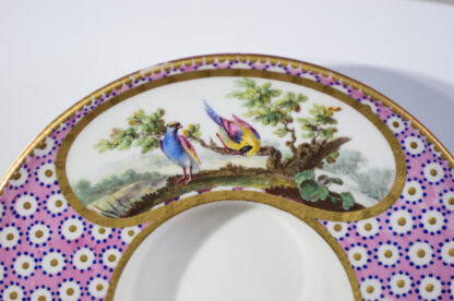 Sevres socketed cup & saucer with birds by Chappuis, 1765-15585