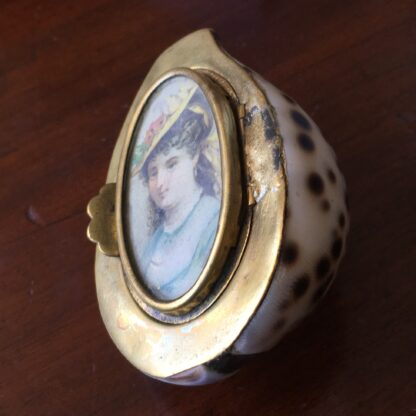 Tiger Cowrie Shell snuffbox with brass mounts & picture frame, 19th century-19186