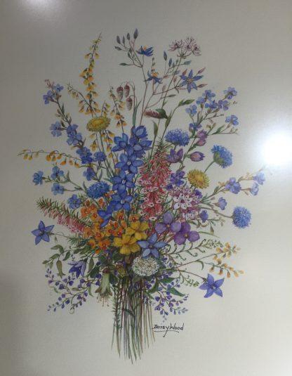 Original Daisy Wood watercolour, Australian Wildflowers, mid 20th c.-0