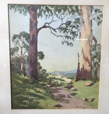 Australian water colour, bluegums, signed WB Stracham , 1924-21478