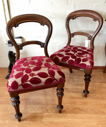 Pair of Australian cedar chairs, 19th century.-0