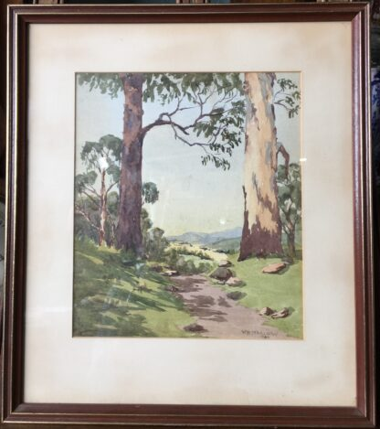 Australian water colour, bluegums, signed WB Stracham , 1924-0