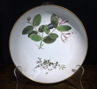 Wedgwood bone china plate, pattern 492, botanical specimens, c. 1815-0