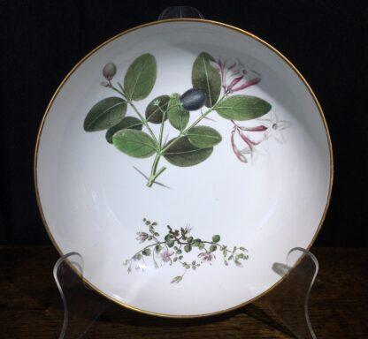 Wedgwood bone china plate, pattern 492, botanical specimens, c. 1815-0