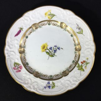 Swansea porcelain plate with flower specimens, C. 1820-0