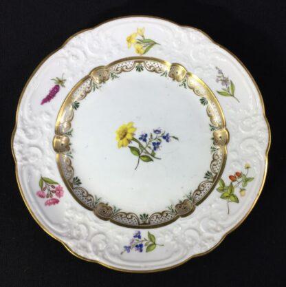 Swansea porcelain plate with flower specimens, C. 1820-0