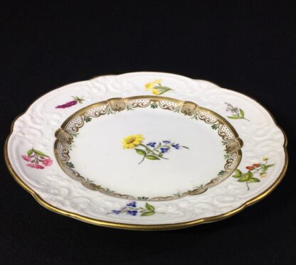 Swansea porcelain plate with flower specimens, C. 1820-25576