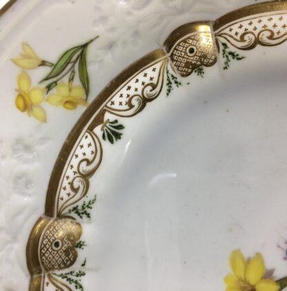 Swansea porcelain plate with flower specimens, C. 1820-25580