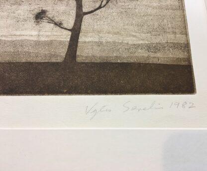 Vytas Serelis Etching - New Moon Galah - 2/36, signed & dated 1982-24511