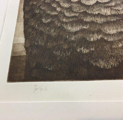 Vytas Serelis Etching - New Moon Galah - 2/36, signed & dated 1982-24513