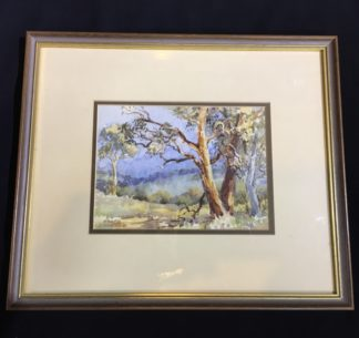 Florence Owen, watercolour, Australian bush, mid 20th century-0