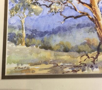 Florence Owen, watercolour, Australian bush, mid 20th century-24522
