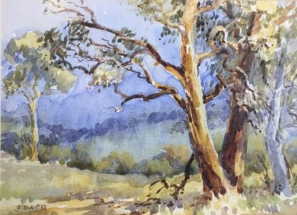 Florence Owen, watercolour, Australian bush, mid 20th century-24521
