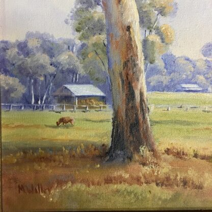 Australian oil on board, 'Peaceful Country', signed M. Willey -24492