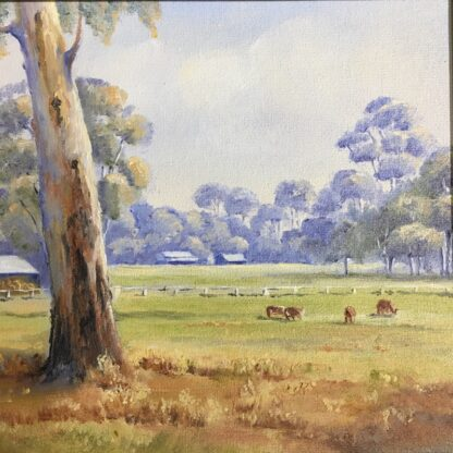 Australian oil on board, 'Peaceful Country', signed M. Willey -24491