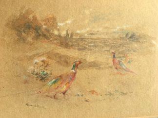 James Stinton (1870-1961) - pheasants in a landscape, c. 1900-0