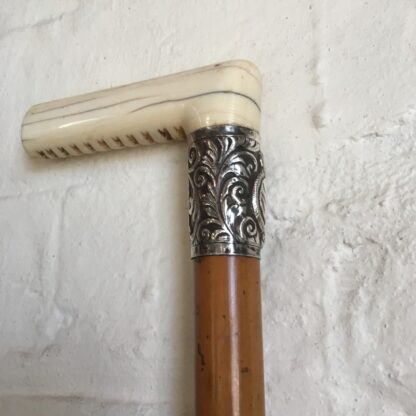 Malacca cane ridding crop with ivory grip & silver mount, 19th century -0