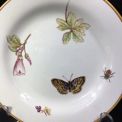 Wedgwood Queensware plate with insects & flowers print, 1885-28044