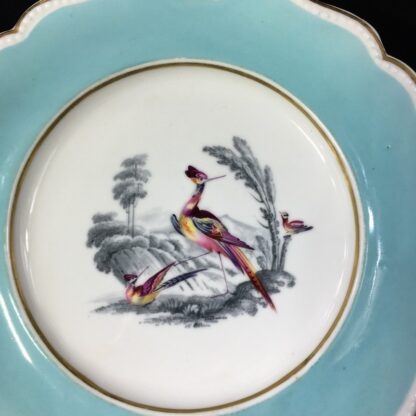 Chamberlains Worcester plate, Fancy Birds in monotone landscapes, c. 1830 -27280