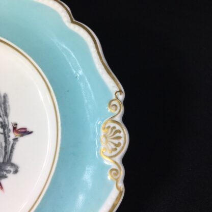 Chamberlains Worcester plate, Fancy Birds in monotone landscapes, c. 1830 -27283