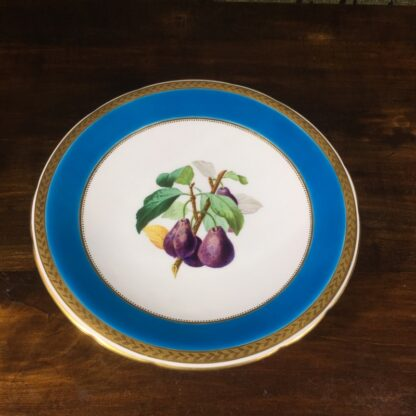 Minton turquoise botanical comport, 1870 -0