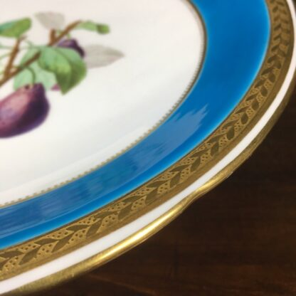 Minton turquoise botanical comport, 1870 -29803