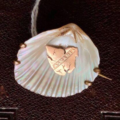 Tassy 'Brooch Shell' brooch with gold Map of Tasmania c.1900-0