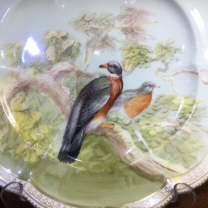 English porcelain plate painted with wood pigeons, C. 1870 -33965