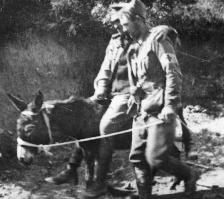 An original photo of 'Simson & his Donkey' in action at Gallipoli